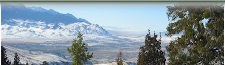 Alternating Header Image